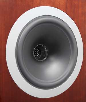 tannoy-dc8t-cone-detail